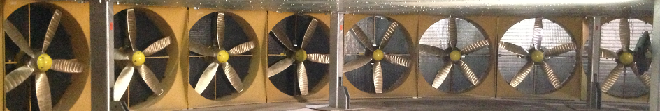 An underwater view of the turbines in the Flowave tidal and wave tank