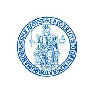 University of Naples Federico II logo