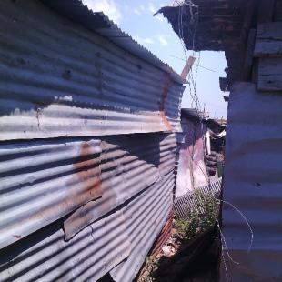 View of an informal settlement, a number of dwellings made of corrugated iron sheets