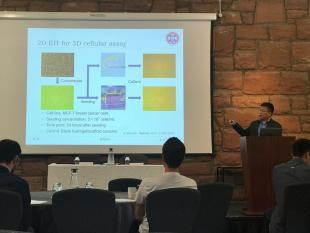 Hancong Wu presenting, IBCA2018