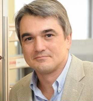 Professor Stefano Brandani, FIChemE, Professor of Chemical Engineering