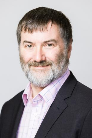 Professor David M Ingram
