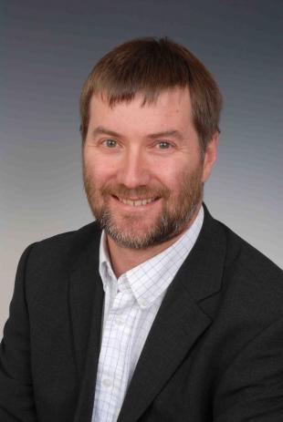 Professor David M Ingram