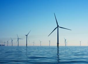 Image of offshore wind turbines at Rampion Wind Farm